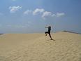sand hopper